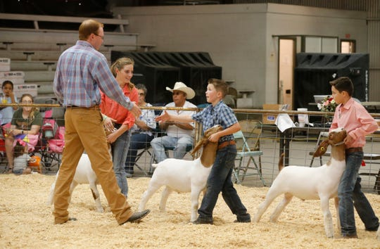Kids from the El Paso and Las Cruces area took part in the El Paso County Livestock Show being held at the El Paso County Coliseum. The livestock show will run through Saturday evening.