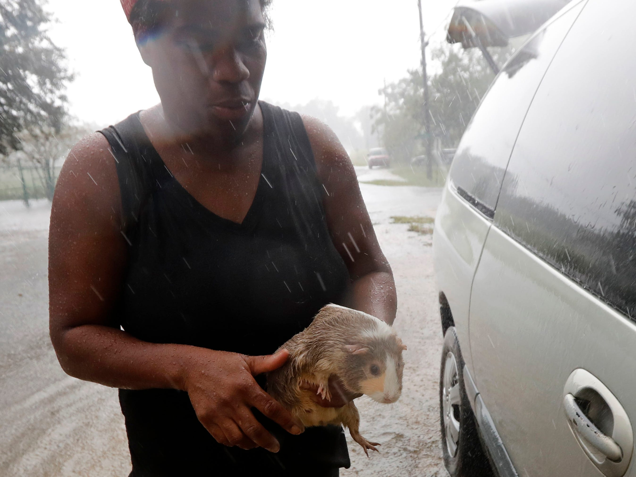 Ivory Frazier retrieves her pet guinea pig, as she evacuates her home due to rising floodwaters from Hurricane Florence in Latta, S.C.Sept. 16, 2018.