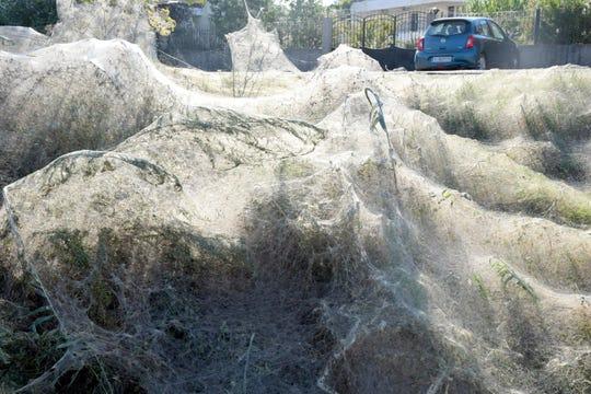 A massive spiderweb stretches across a beach in Aitoliko, Greece.