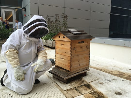 Asbury Park Press reporter Jerry Carino, in bee suit, gets a close look at one of the hives.
