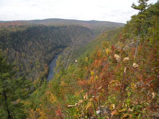 Pine Creek Gorge is 47 miles long and is carved into the Allegheny Plateau.