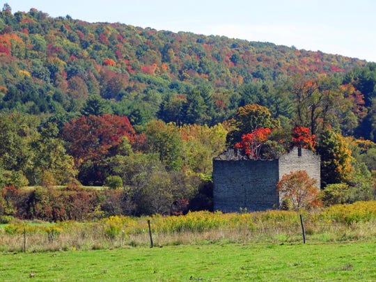 Fall foliage on Genegantslet Road in Greene.