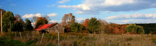 A barn blends in with the fall foliage in the Town of Willet, north of Greene.