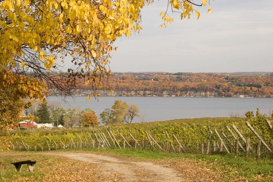 Sheldrake Point Vineyards in Ovid is on the Cayuga Lake Scenic Byway.