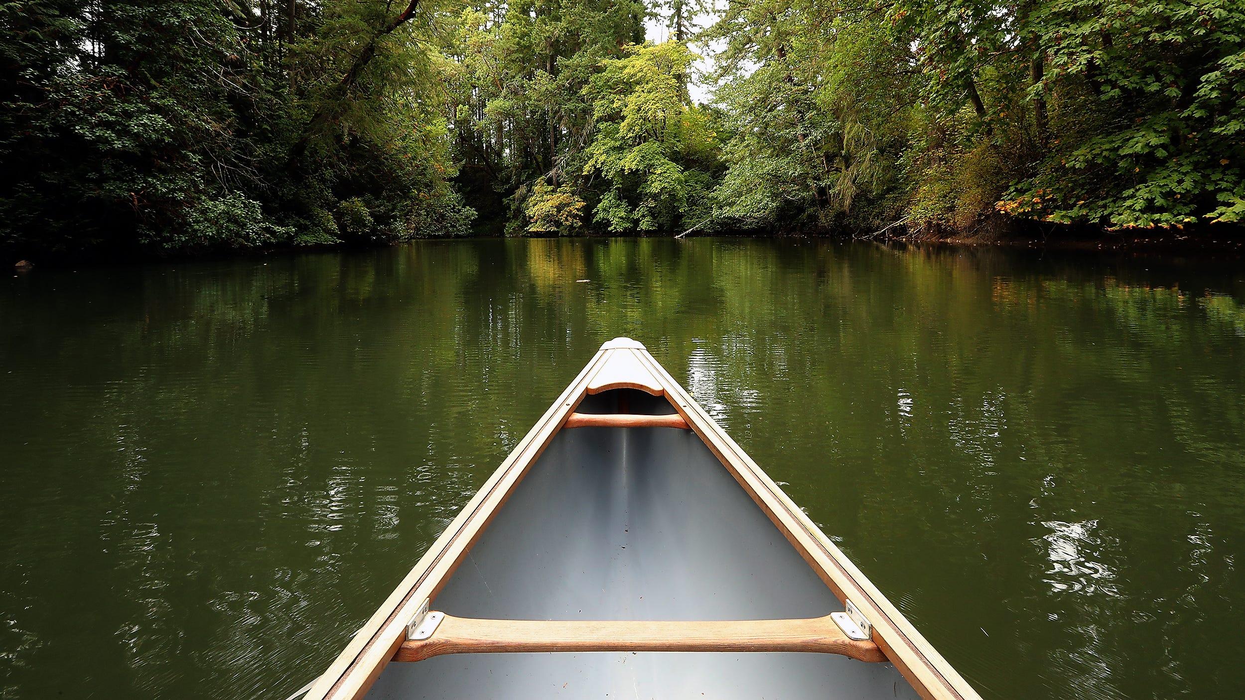Bainbridge Island Land Trust acquiring waterfront property to open as nature preserve