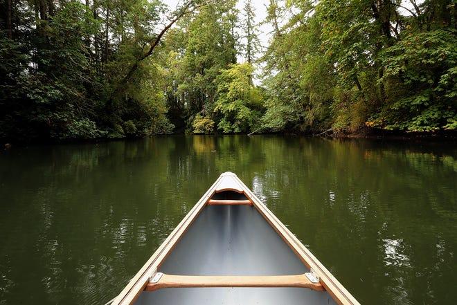 A canoe paddled by Jane Stone, executive director of the Bainbridge Island Land Trust, heads into the estuary of the Miller-Kirkman Preserve on Thursday.