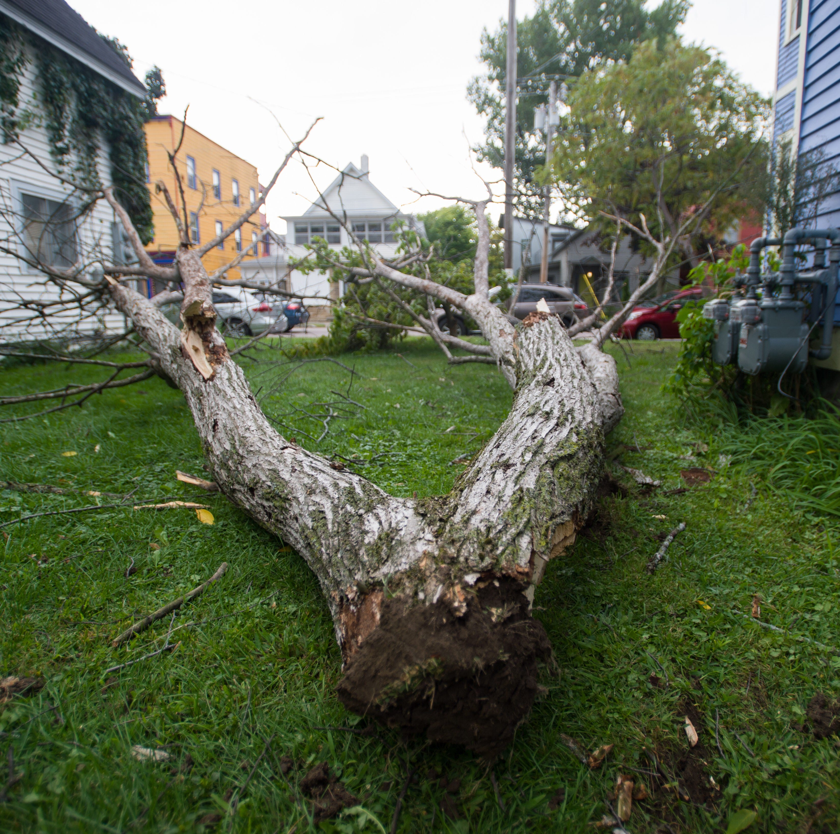 Vermont windstorm: Power outages spread on a stormy, topsy-turvy weather day