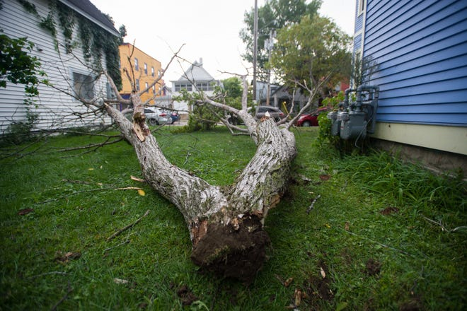 Large tree branches damaged the roof of a home at 206 North Winooski Ave. in Burlington Friday afternoon, Sept. 21, 2018, as high winds blew through Vermont.