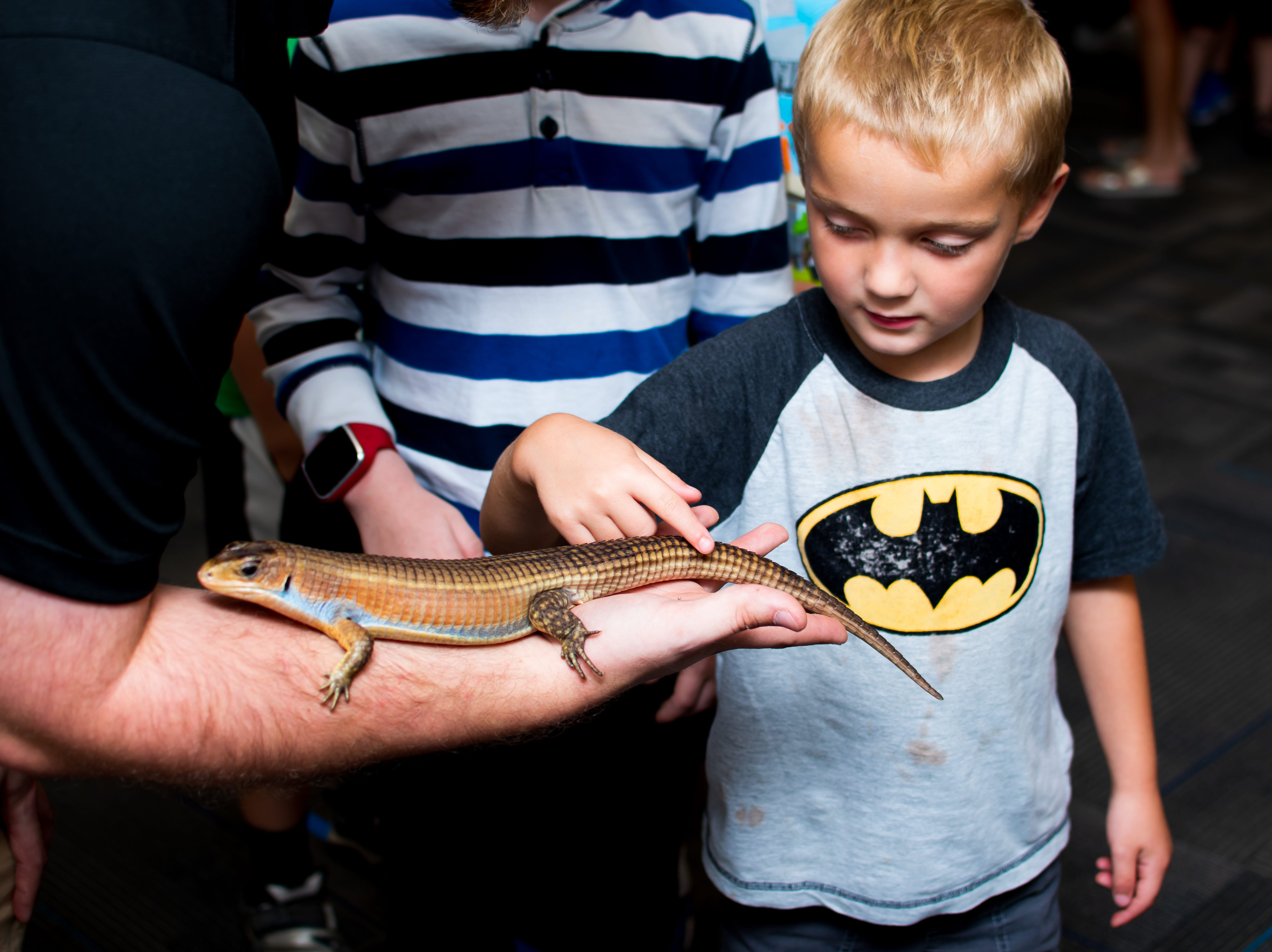 Cameron Evans, 4, of Cumming, touches a plated lizard named Niles on Thursday, September 20, 2018 at the Clive Public Library's Zoo Show and Tell in Clive.