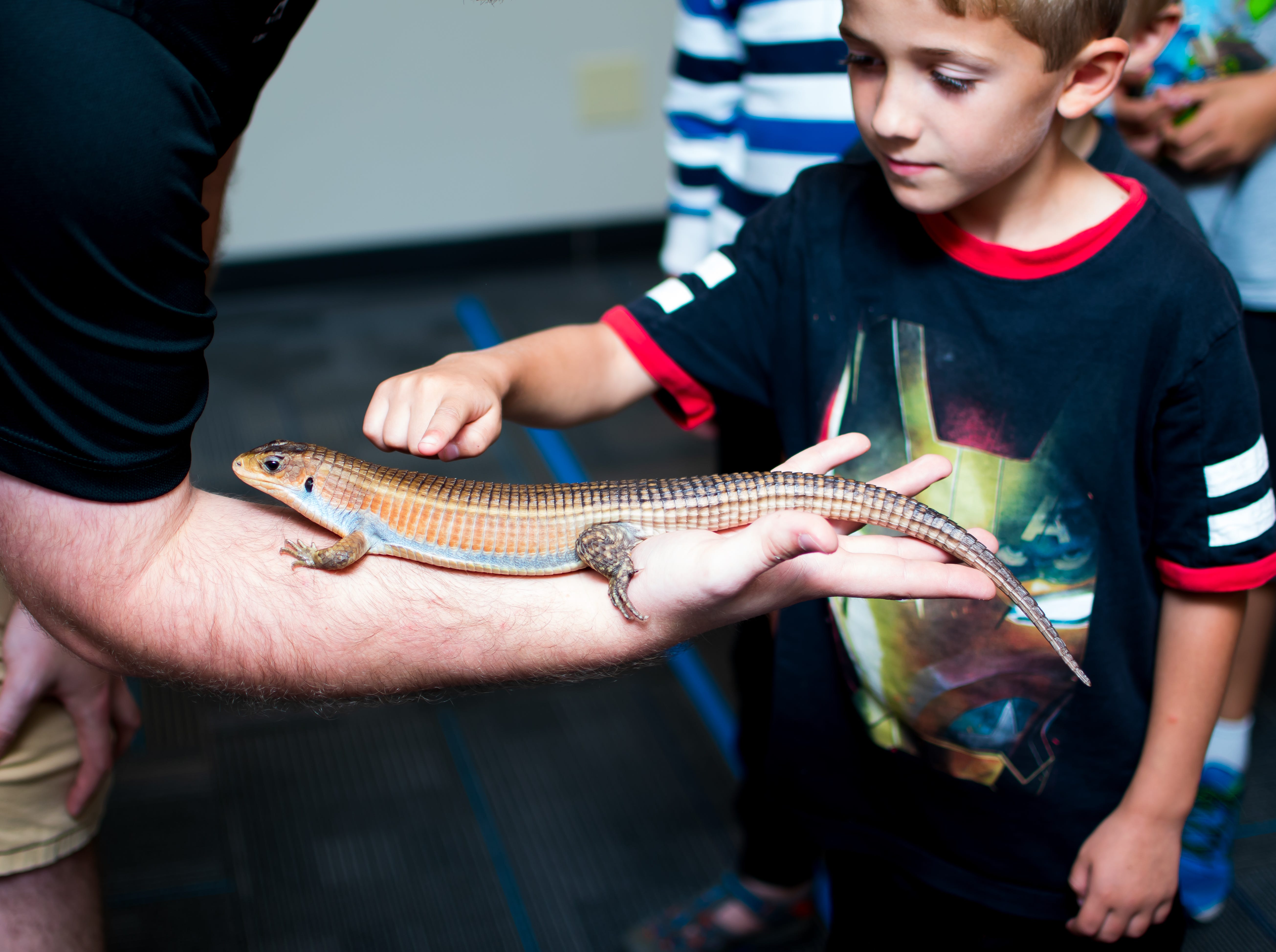 Jared Sunds, community outreach specialist for the Blank Park Zoo, brings out a plated lizard named Niles on Thursday, September 20, 2018 at the Clive Public Library's Zoo Show and Tell in Clive.