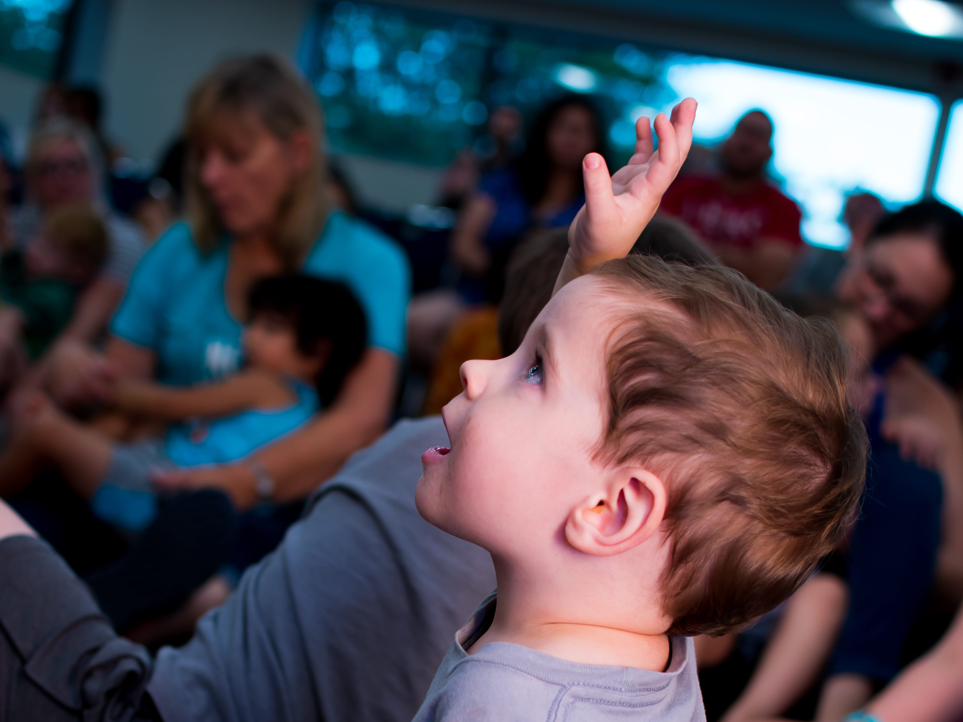 Lincoln Jensen, 2, of Clive raises his hand to ask a question on Thursday, September 20, 2018 at the Clive Public Library's Zoo Show and Tell in Clive.