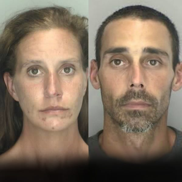 2 charged in Livonia carjacking of woman, 88