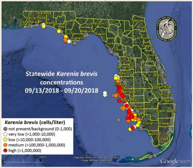 FWC red tide report for Sept. 20