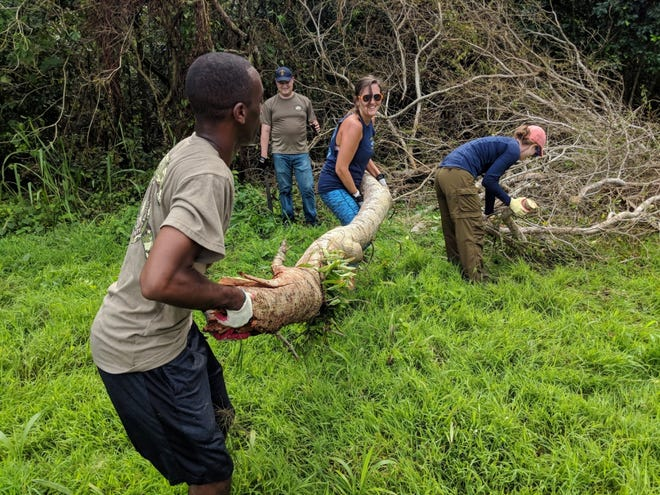 Sailors assigned to Commander, Submarine Squadron 15 and Performance Monitoring Team detachment Guam volunteered time to assist with typhoon recovery in the command's sister village of Inarajan, Sept. 17-19.