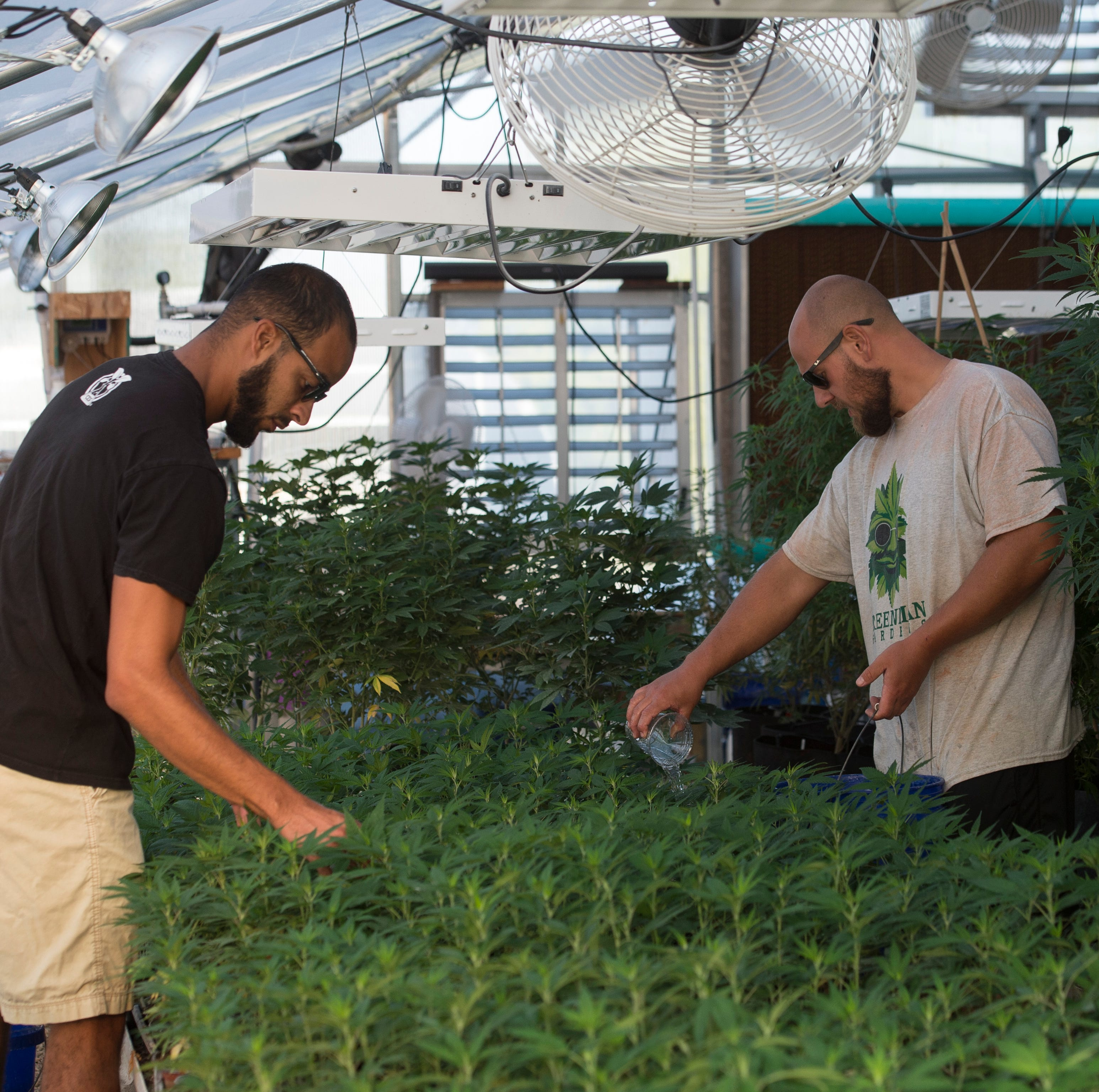Part 2: What's the future of hemp in Henderson County?