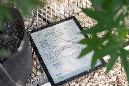 A grower license to produce hemp rest on a table inside a Greenman Gardens greenhouse Sept. 18, 2018. Greenman Gardens in Henderson County were the first in the county to receive a license to under Kentucky's hemp pilot program.