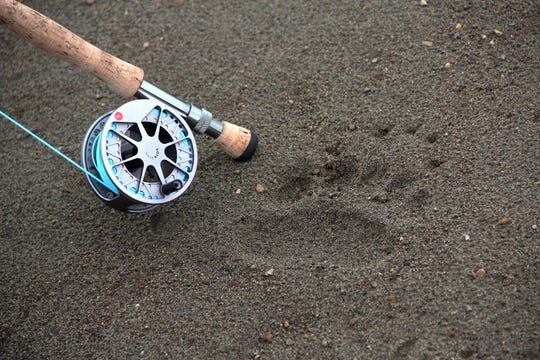An fly rod rests next to a brown bear track in the sand along the Alagnak River.