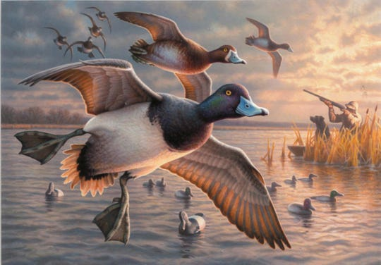 Greg Alexander of Ashland took third place with this acrylic painting of lesser scaup, commonly called bluebills, coming into a hunting spread.