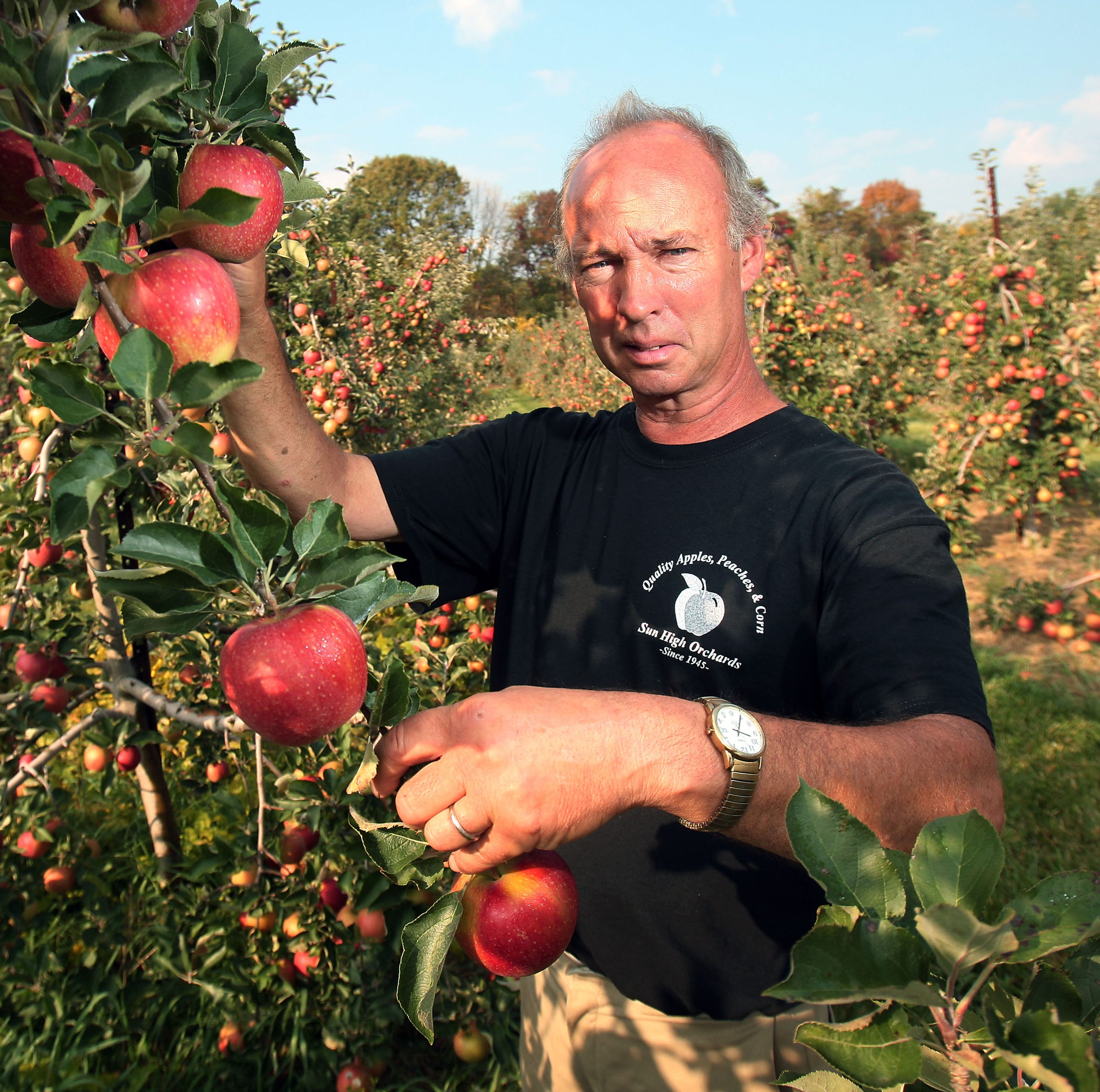 Randolph orchard bustling despite manager's arrest for groping teens