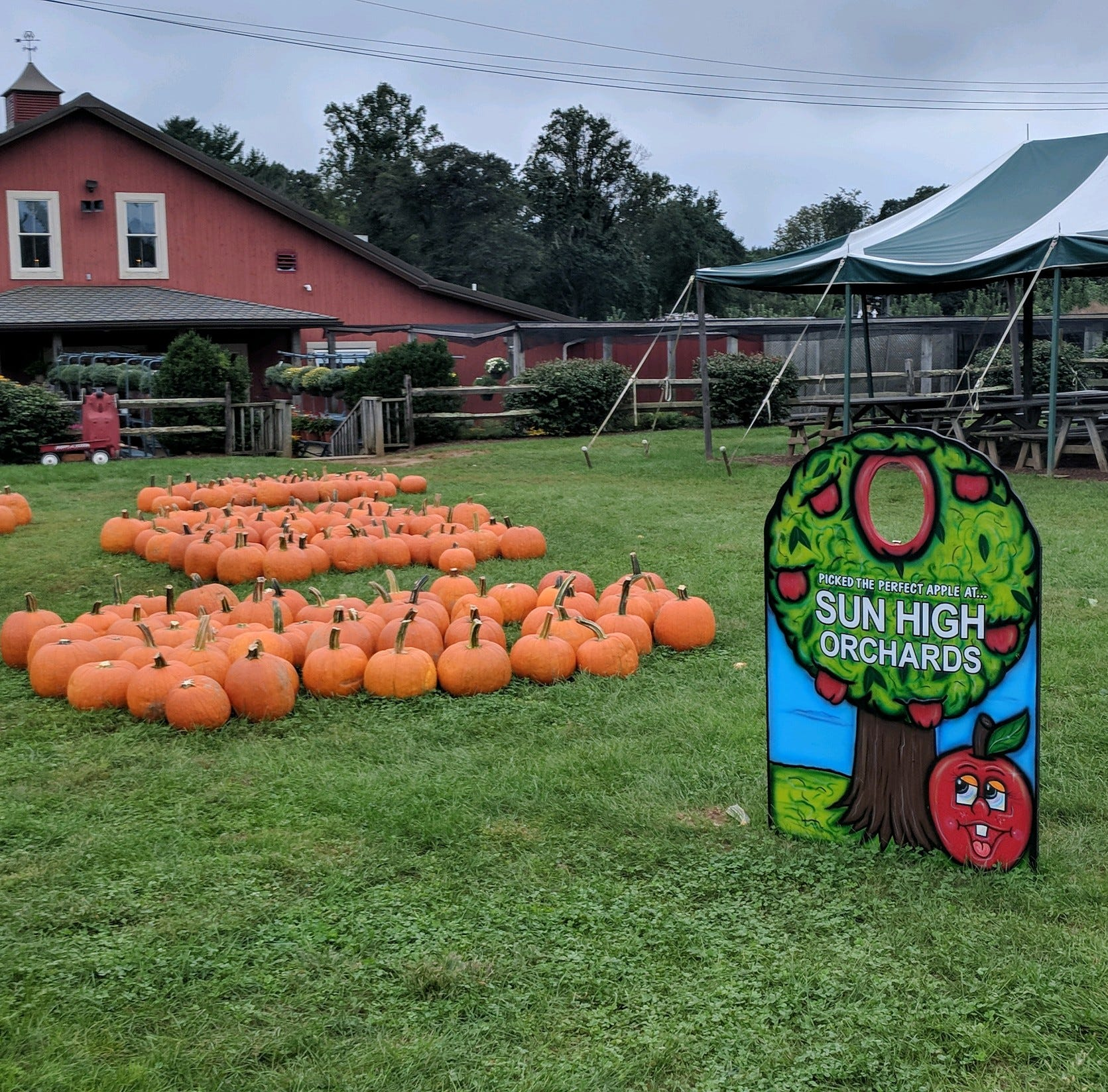 Customers react to groping charges against Randolph apple orchard manager