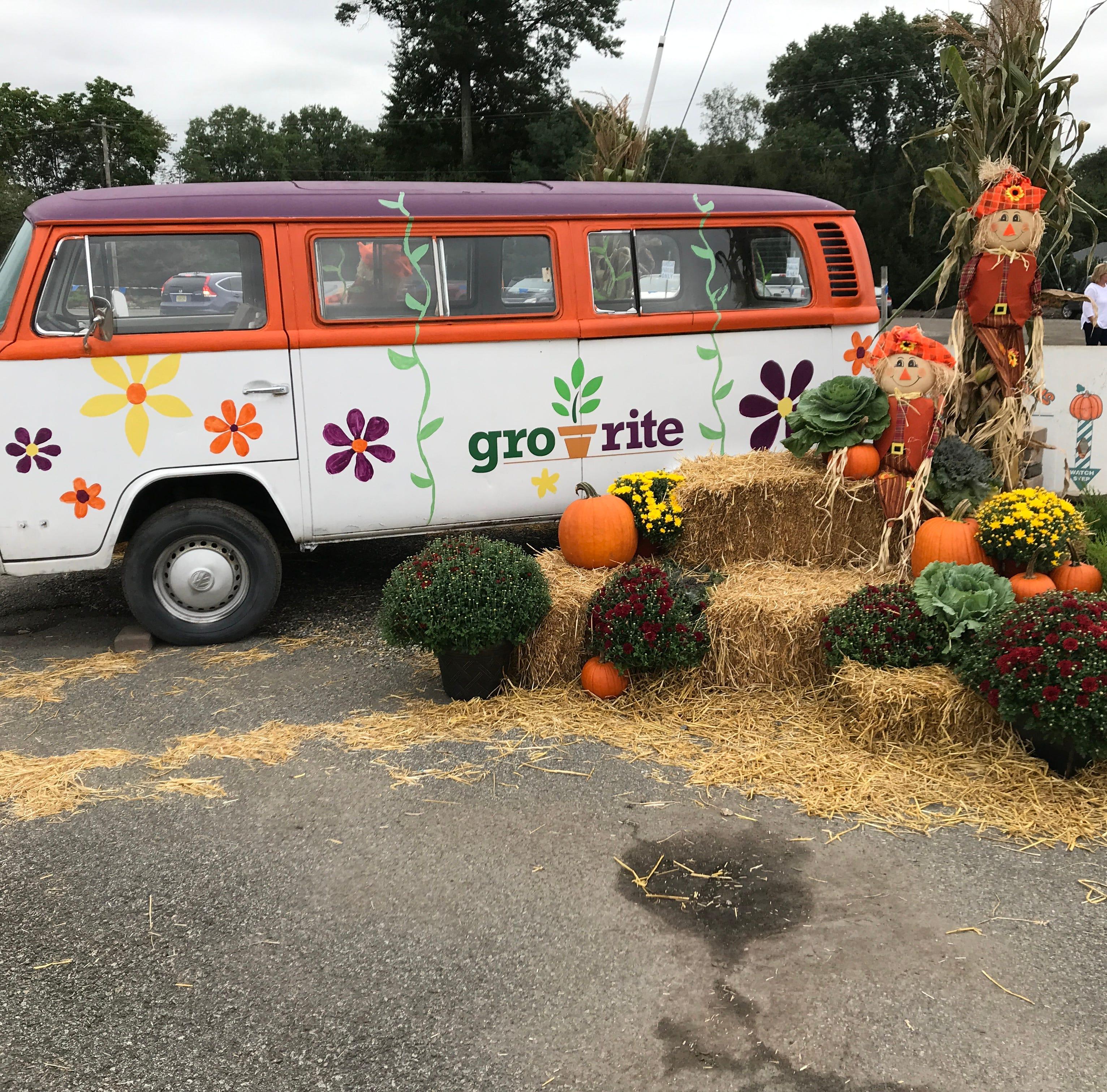 Mums to marijuana: Pequannock family farm applies for license to grow medical pot