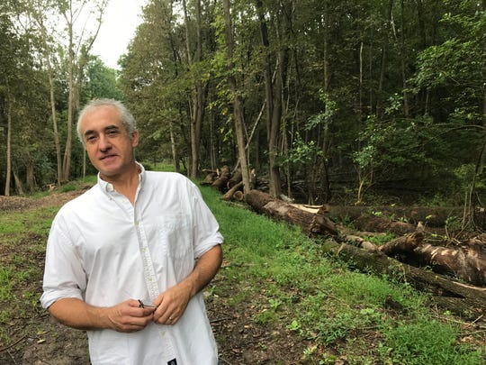 Jonathan Grupper, of the Friends of Bonsal Preserve, poses along a path, above a water supply line. Trunks from downed trees are in the background. The preserve borders Clifton and Montclair.
