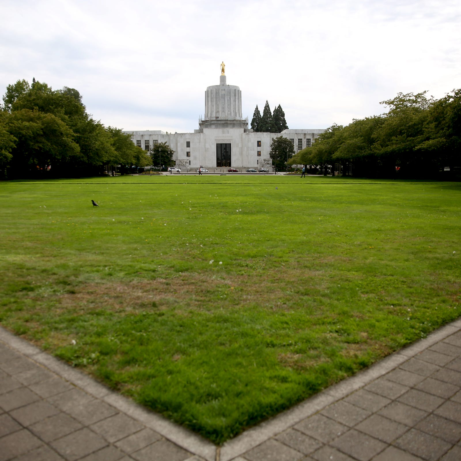 Oregon Capitol's flowering cherry trees may come down