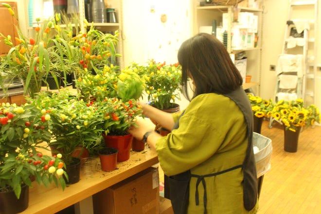 Victoria Enriquez prepares flowers at Stemmed Designs, 135 W Twohig Ave, Suite E, on Wednesday, Sept. 19, 2018.