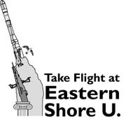 A logo for a group that wants to bring a four-year university to Virginia's Eastern Shore depicts a rocket and a gull.