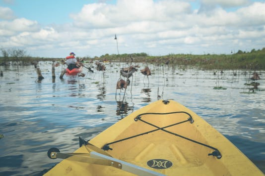 Lake Jackson Cleanup