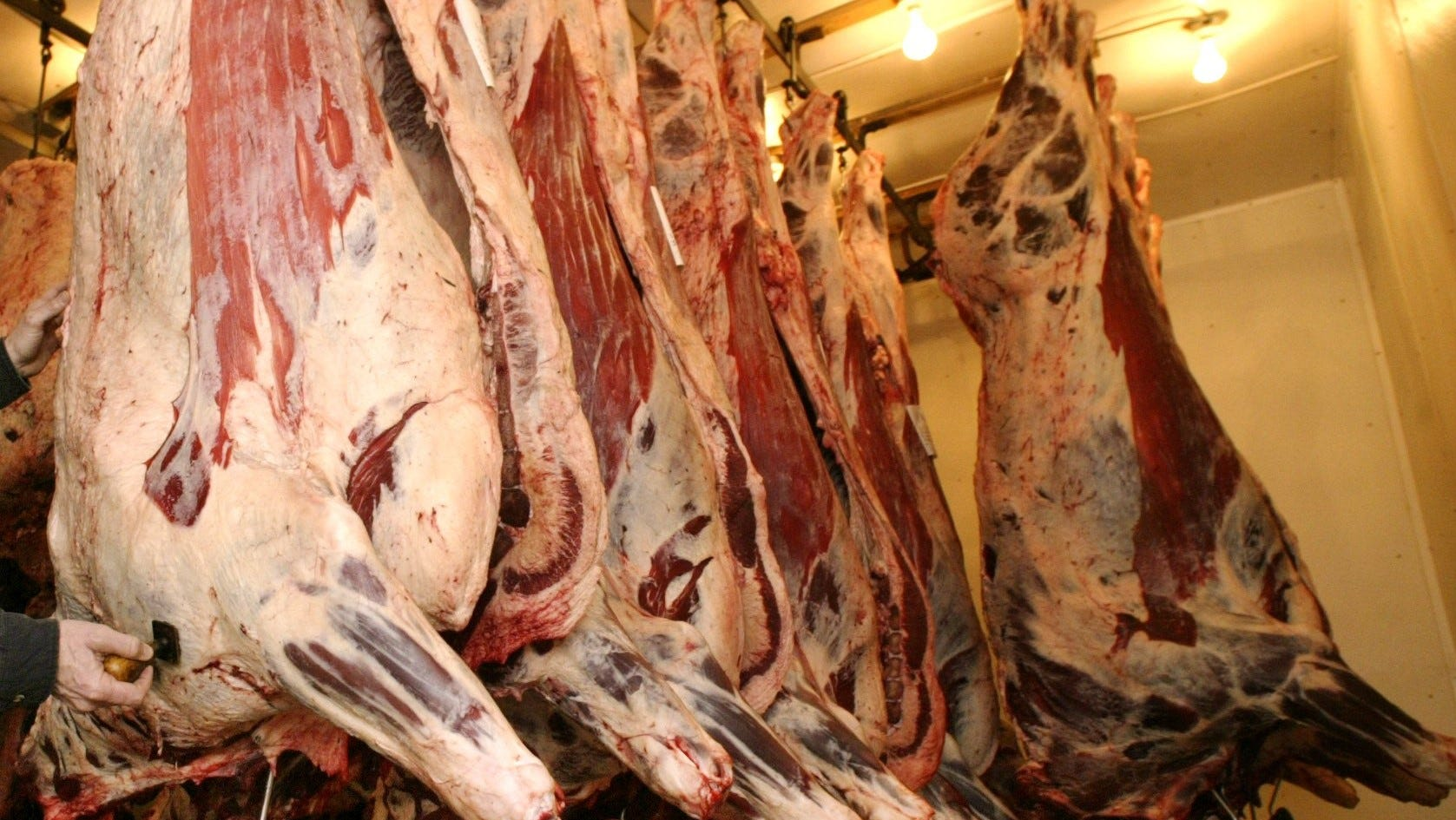 Meat hangs in the Stanhope Locker, a quality meat processing, butchering, retail meat business in Stanhope, Iowa, in this 2004 file photo.