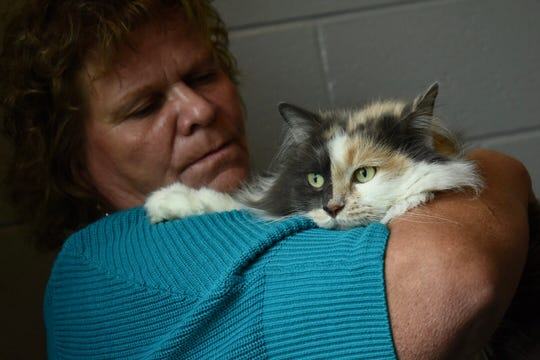 "Robin Ross Case, Dearborn Heights, cradles a three-year-old dilute calico cat named ""Suki,"" which she adopted for her mom.""We don't buy cats, we only save,"" said Case who has rescued other cats."