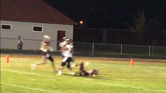 Davis Catch 2