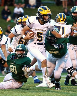 Hartland sophomore Holden D'Arcy leads Livingston County in passing yards and touchdown passes.