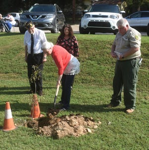 Cotter Mayor Peggy Hammack places a shovel full of French soil around a willow tree dedicated to the centennial ending of World War I and those Arkansans that fought in the Great War. Behind Mayor Hammack is (from left) Dr.  John R. Wright, alternate chaplain with the the Joe P. Joslin Jr. American Legion Post 23; Ronette Eubanks of the Cotter Tree Board; and Kenny Smothers of the Arkansas Forestry Commission.