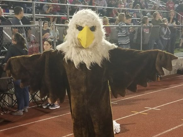 The Bermudian Springs mascot is seen during Friday's game.