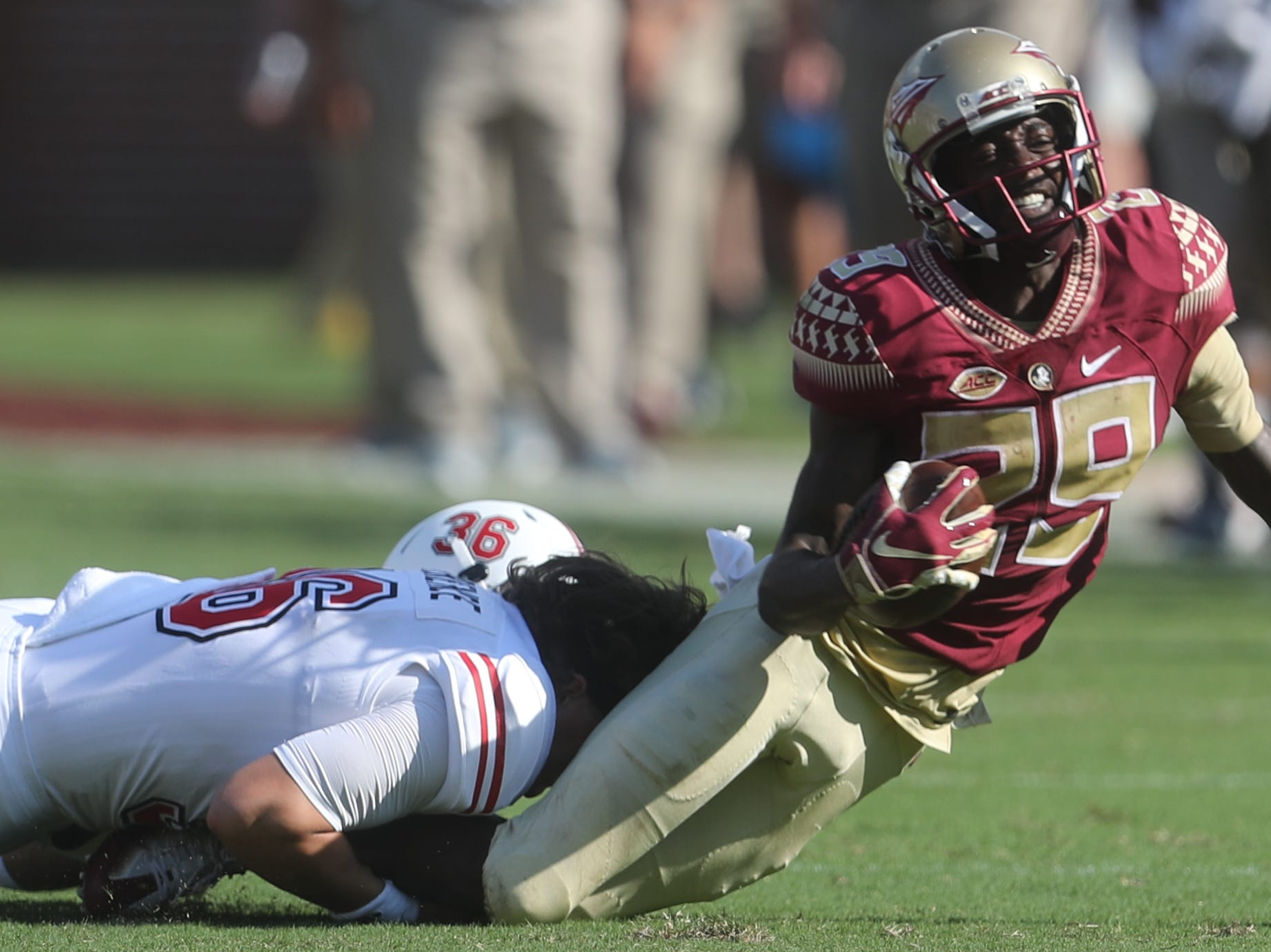 As his helmet comes off, Northern Illinois Huskies punter Matt Ference (36) tackles Florida State Seminoles wide receiver D.J. Matthews (29) during a game between the Florida State University Seminoles and the Northern Illinois University Huskies at Doak S. Campbell Stadium in Tallahassee, Fla. Saturday, September 22, 2018.