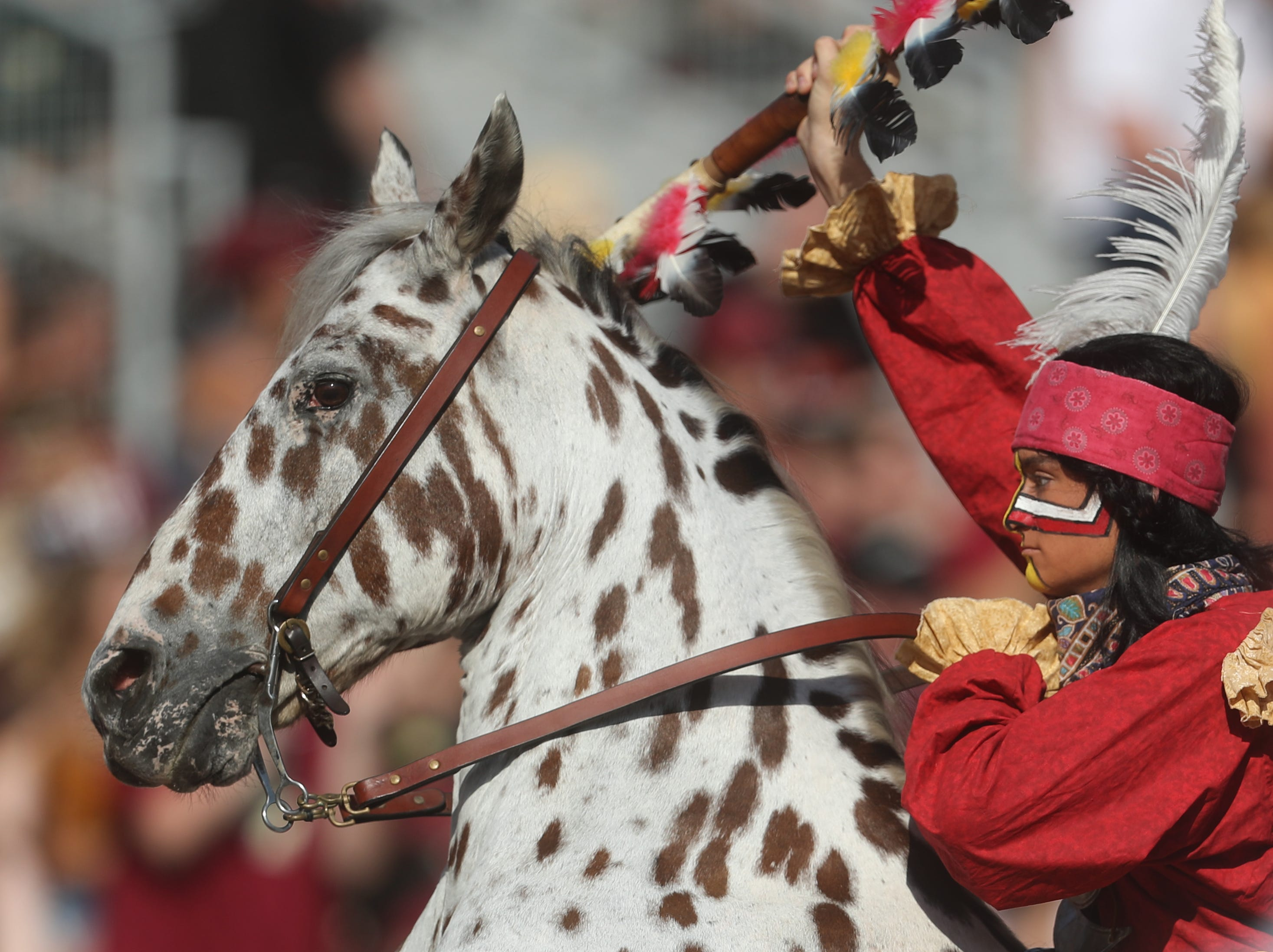 Chief Osceola and Renegade celebrate during a game between the Florida State University Seminoles and the Northern Illinois University Huskies at Doak S. Campbell Stadium in Tallahassee, Fla. Saturday, September 22, 2018.