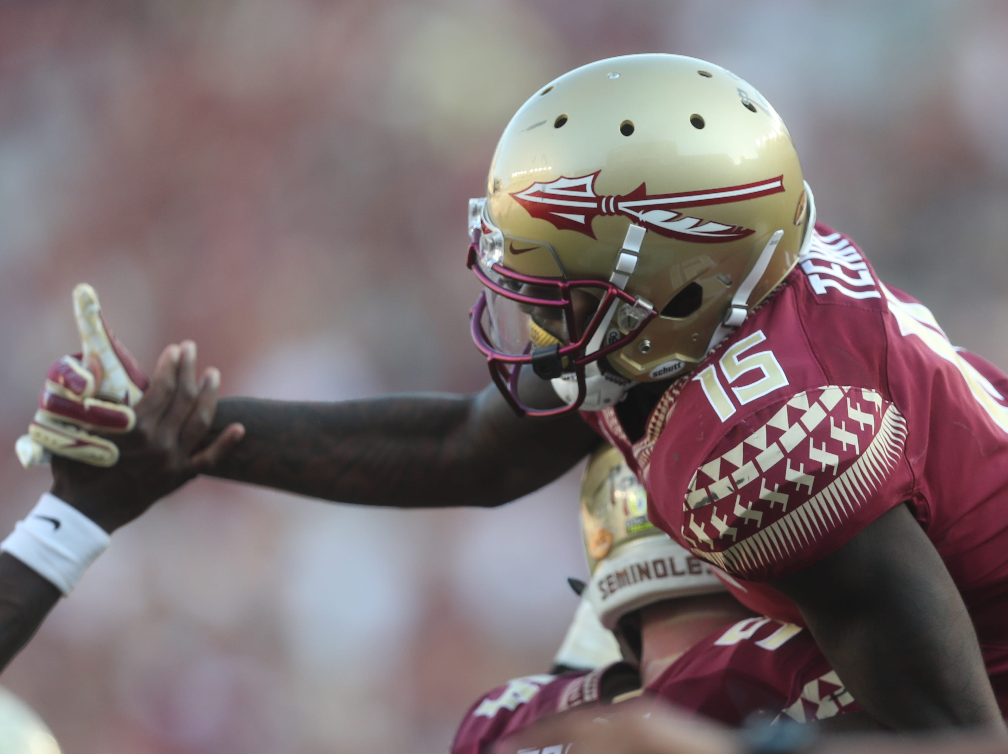 Florida State Seminoles wide receiver Tamorrion Terry (15) celebrates after a touchdown during a game between the Florida State University Seminoles and the Northern Illinois University Huskies at Doak S. Campbell Stadium in Tallahassee, Fla. Saturday, September 22, 2018.
