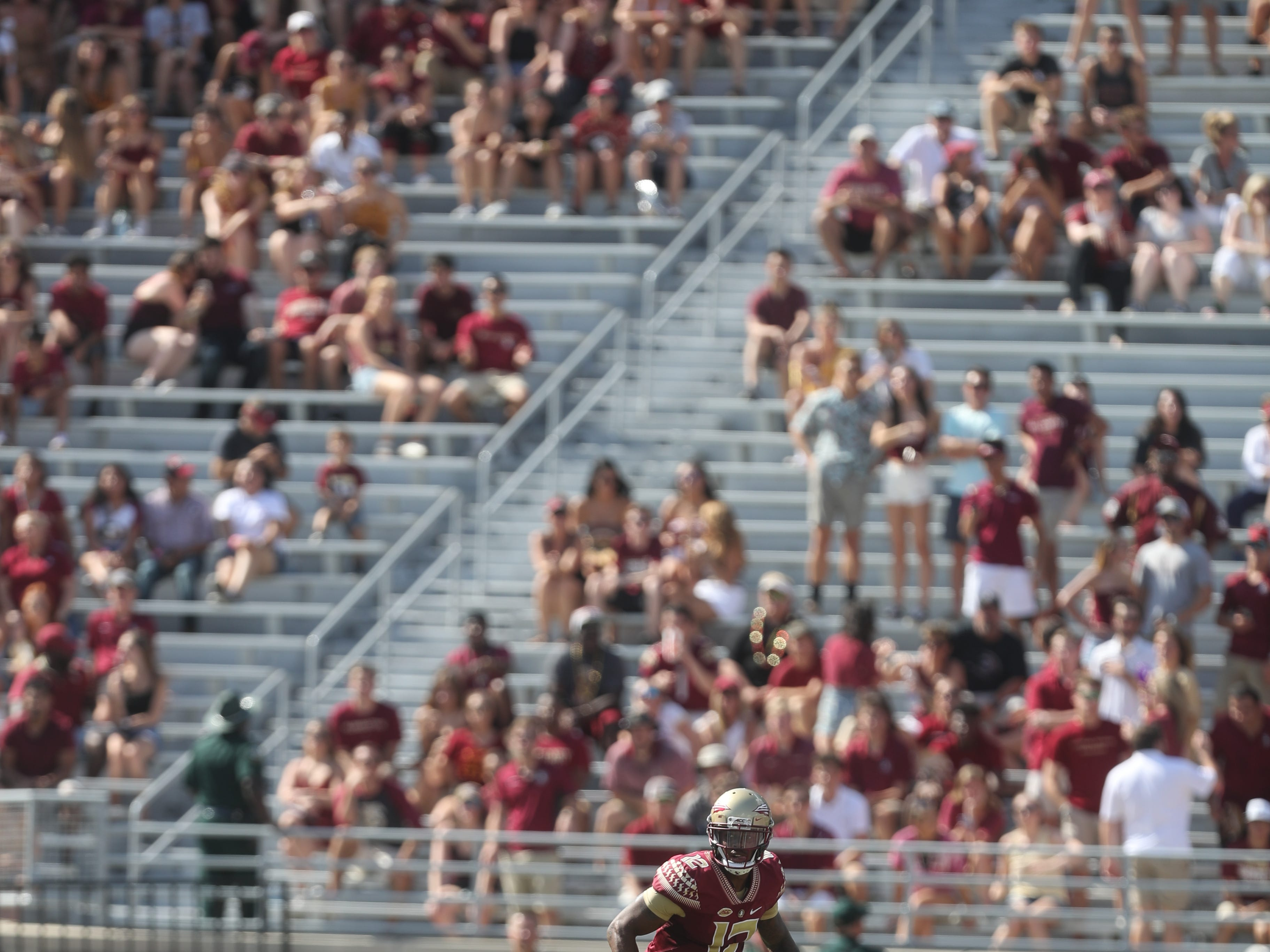 Florida State Seminoles quarterback Deondre Francois (12) looks for an open receiver during a game between the Florida State University Seminoles and the Northern Illinois University Huskies at Doak S. Campbell Stadium in Tallahassee, Fla. Saturday, September 22, 2018.