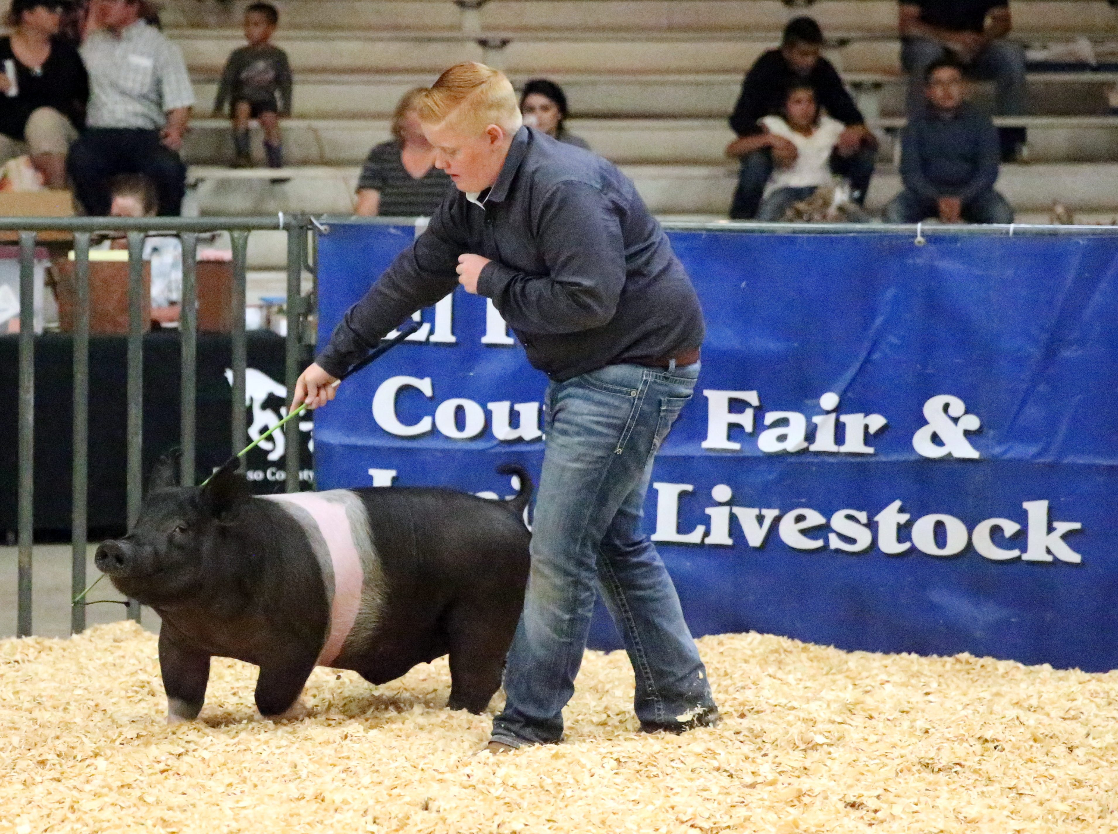 Ayden Cox with the Grand Champion hog Saturday.