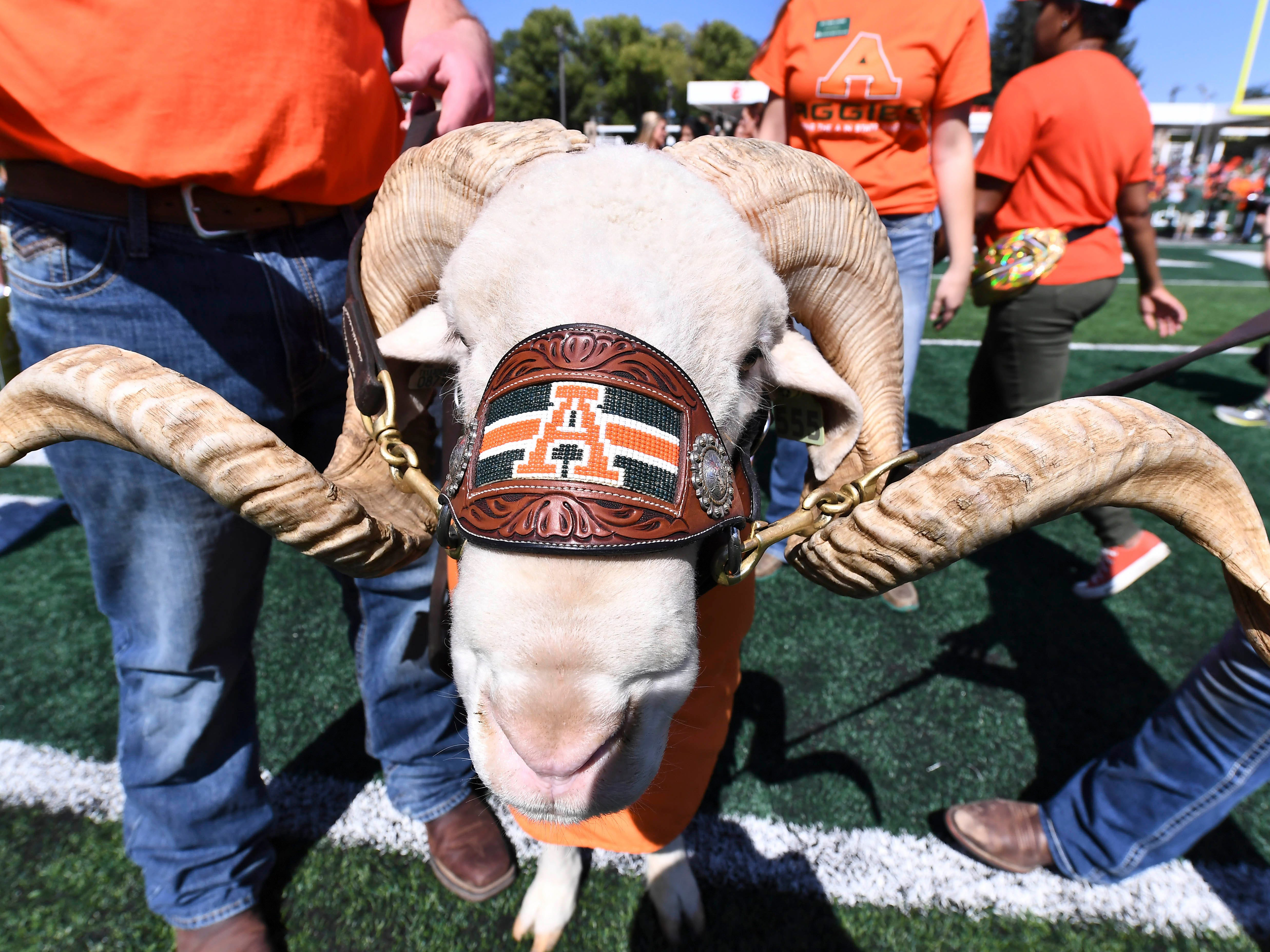 Colorado State Rams mascot Cam the Ram before the game against the Illinois State Redbirds at Canvas Stadium.