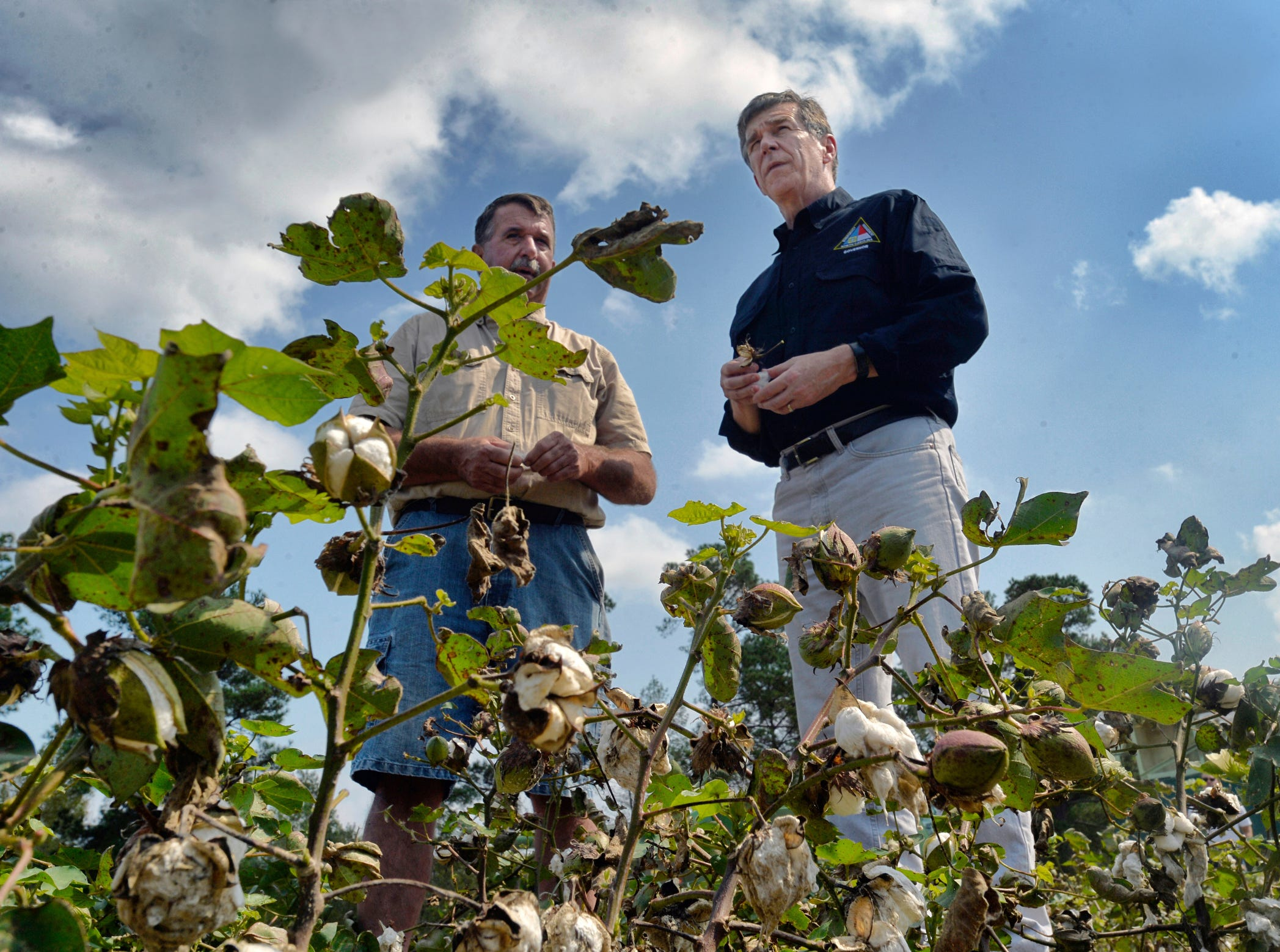 North Carolina Gov. Roy Cooper,  right, surveys the heavily damaged cotton field of farmer Bryan Hagler  during a tour of agricultural areas hit hard by Hurricane Florence, Friday, in Laurinburg, N.C.