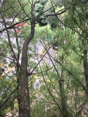 Braden Tolas, 11, shot this photo with his iPhone as he waited for firefighters to rescue him and his stepsister Davela Dente from the pine tree they were stuck on Sept. 23, 2018 in Middletown.