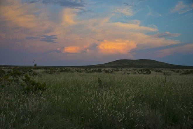 Apache Flats in the Sierra de las Uvas.