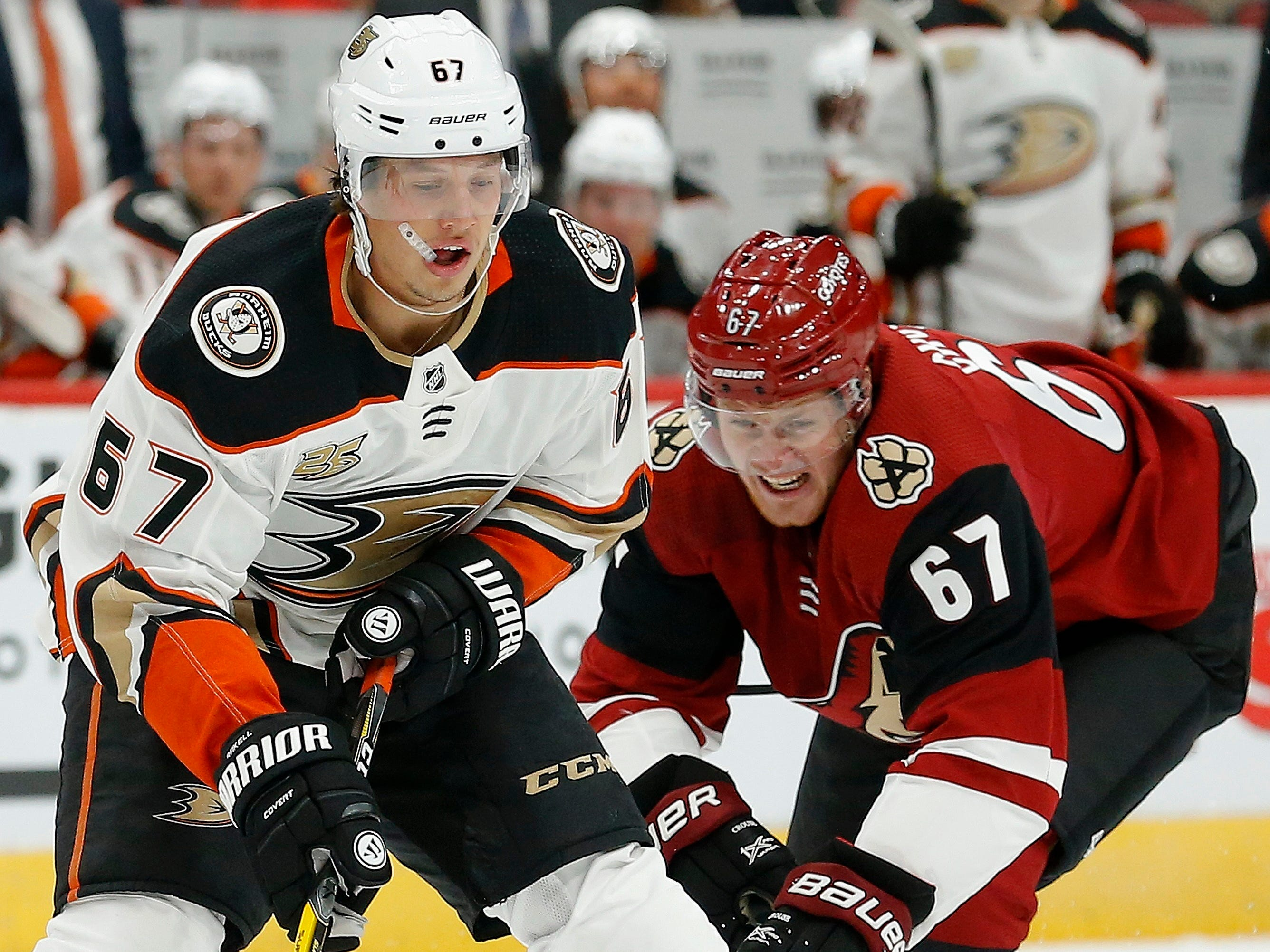 Anaheim Ducks center Rickard Rakell, left, battles with Arizona Coyotes left wing Lawson Crouse, right, for the puck during the first period of an NHL preseason hockey game Saturday, Sept. 22, 2018, in Glendale, Ariz.