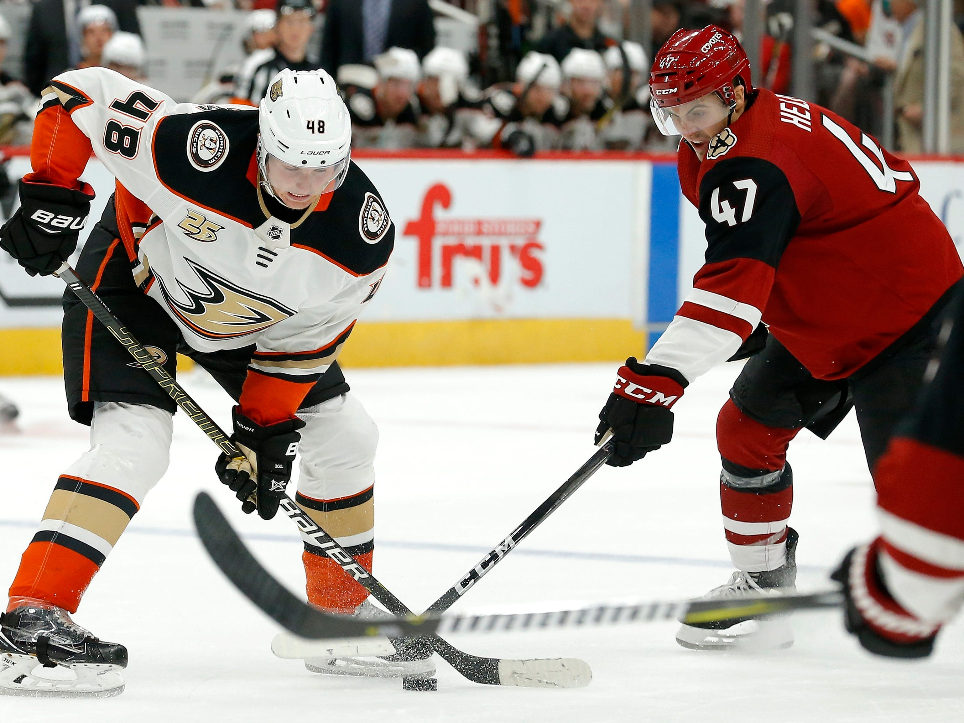 Anaheim Ducks center Isac Lundestrom (48) tries to get off a pass as Arizona Coyotes left wing Adam Helewka (47) arrives to poke the puck away during the third period of an NHL preseason hockey game Saturday, Sept. 22, 2018, in Glendale, Ariz. The Coyotes defeated the Ducks 6-1.