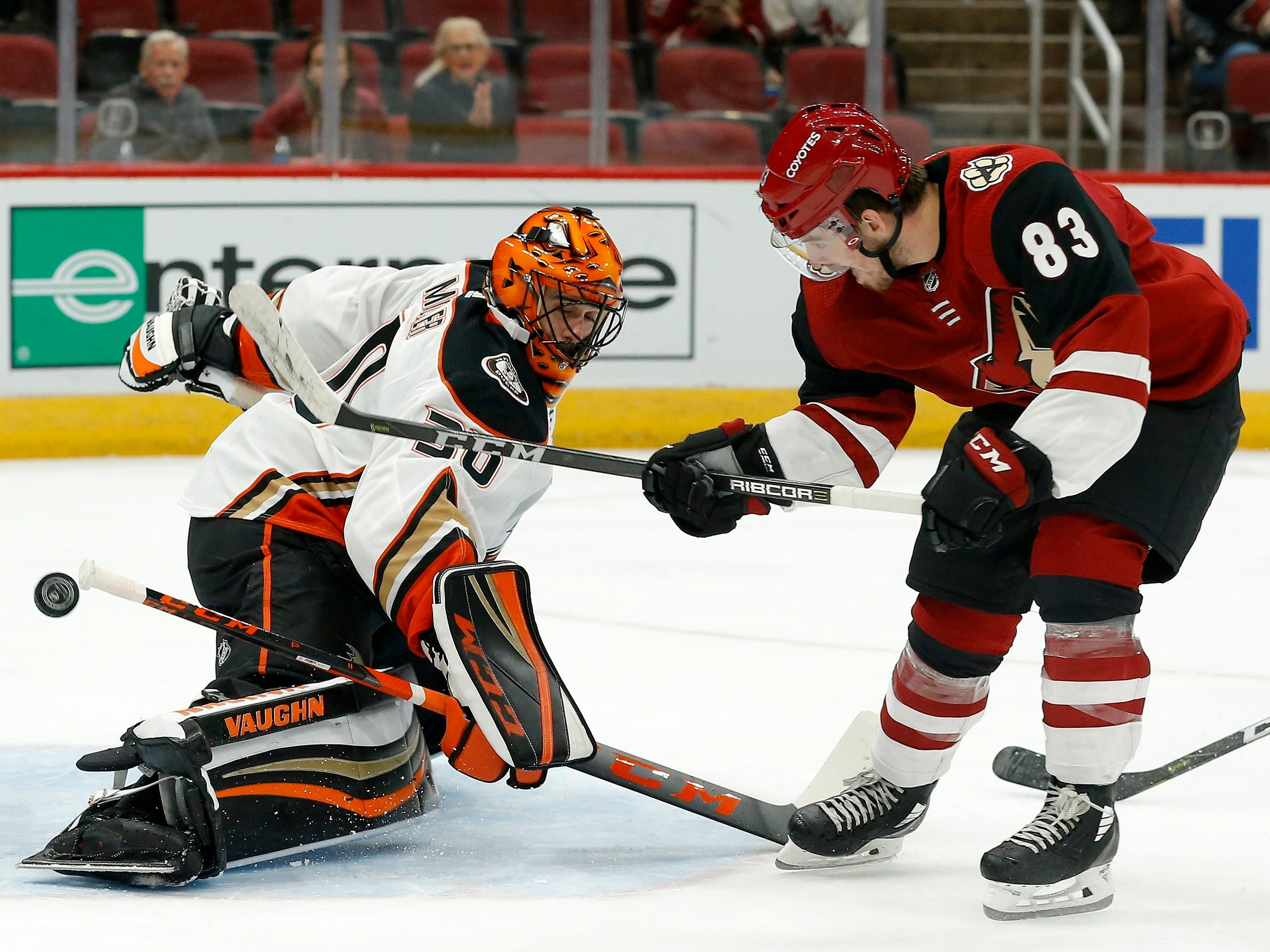 Arizona Coyotes' Conor Garland (83) scores a goal against Anaheim Ducks goaltender Ryan Miller during the second period of an NHL preseason hockey game Saturday, Sept. 22, 2018, in Glendale, Ariz.