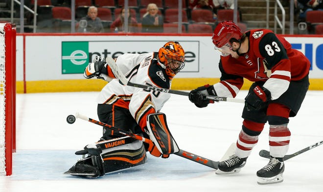 Coyotes forward Conor Garland scores a goal on Ducks goaltender Ryan Miller during the second period of a preseason game on Sept. 22.