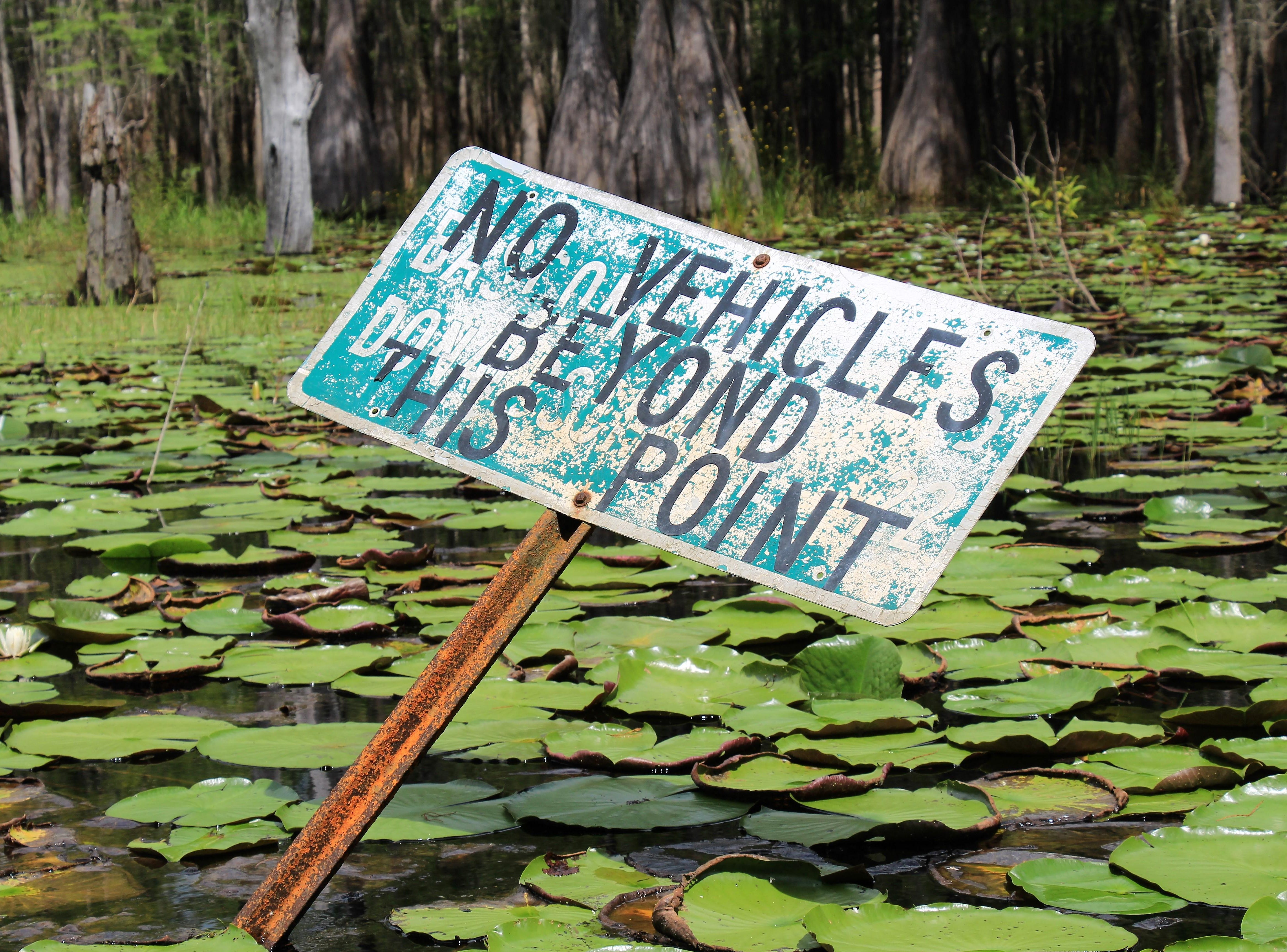 Sign in the water near the landing at Ocheesee Pond